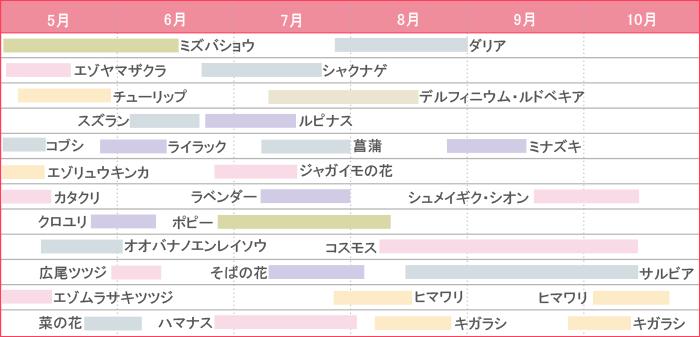 開花時期グラフ