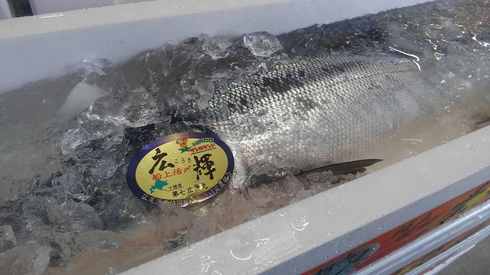 広尾ブランド秋鮭「広輝」
